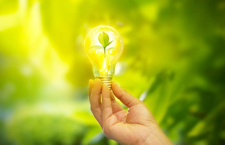 Vibrant Ideas Economical Bulbs