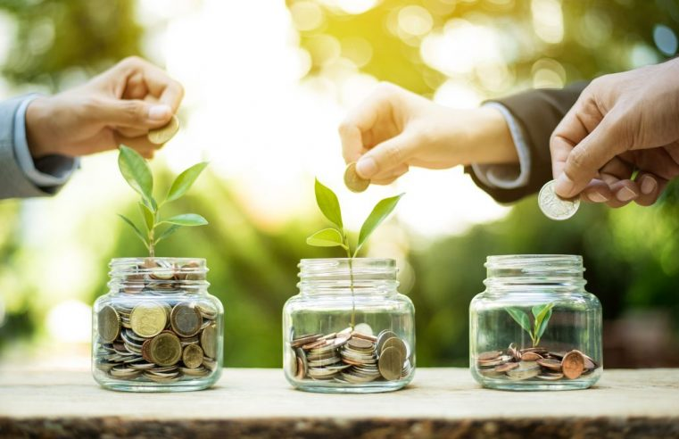 Make Major Money Like a Eco-friendly Consultant
